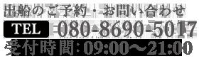 080-8690-5017